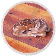 Small Deer Fawn Resting On Cedar Wood Deck Round Beach Towel