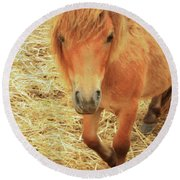 Small Horse Large Beauty Round Beach Towel