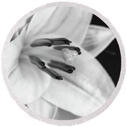 Small Lily-2 Bw Round Beach Towel