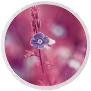 Small Romantic Violet Flower Round Beach Towel