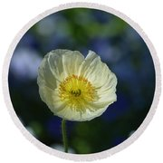 Small White Poppy Round Beach Towel