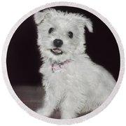 Smiling Puppy Round Beach Towel