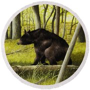 Smoky Mountain Bear Round Beach Towel
