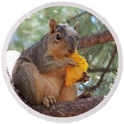 Snack Time Round Beach Towel