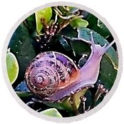 Snail On A Bush Version 2 Round Beach Towel