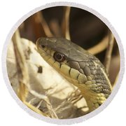 Snake Eye Round Beach Towel