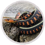 Snakes On A Stump Round Beach Towel