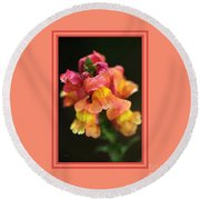 Snapdragon Flowers With Design Round Beach Towel