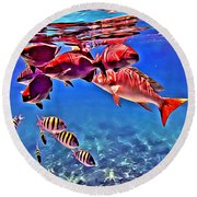 Snapper Feed Round Beach Towel