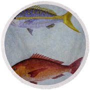 Snappers Round Beach Towel