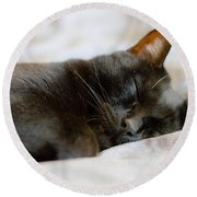Snoozy Kitty Round Beach Towel