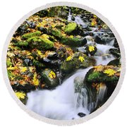 Snoqualmie National Fores Round Beach Towel