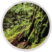 Snoqualmie National Forest Round Beach Towel