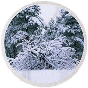 Snow Burdened Tree In The Flatirons Round Beach Towel
