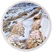 Snow Covered Cactus Below Mount Whitney Eastern Sierras Round Beach Towel