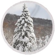 Snow Covered Spruce Round Beach Towel