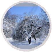 Snow-covered Sunlit Apple Trees Round Beach Towel