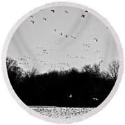 Snow Geese Winter Home In Delaware Round Beach Towel