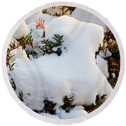 Snow Goat Round Beach Towel