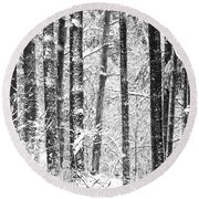 Snow In A Forest Round Beach Towel