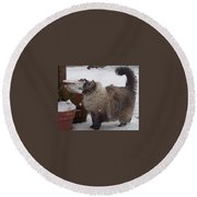 Snow Kitty Round Beach Towel