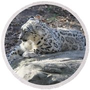 Snow-leopard Round Beach Towel