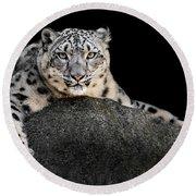 Snow Leopard Xxii Round Beach Towel