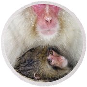 Snow Monkey Love Round Beach Towel
