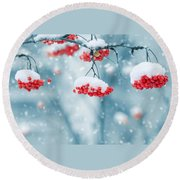 Snow On Red Berries Round Beach Towel