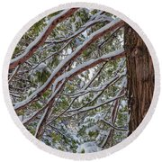 Snow On The Branches Round Beach Towel