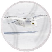 Snow Owl Glide Round Beach Towel