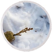 Snow Sprouts Round Beach Towel