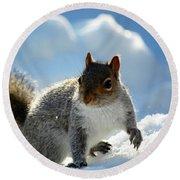 Snow Squirrel Round Beach Towel
