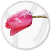 Snow Tulip Round Beach Towel