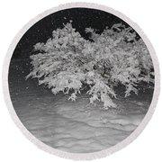 Snow White Tree Round Beach Towel