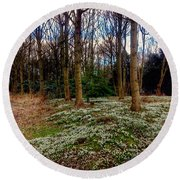 Snowdrop Woods 2 Round Beach Towel