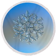 Snowflake Photo - Gardener's Dream Round Beach Towel by Alexey Kljatov