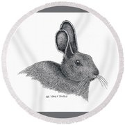 Snowshoe Hare Round Beach Towel