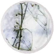 Snowstalks Round Beach Towel
