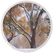 Snowy Autumn Landscape Round Beach Towel by James BO  Insogna