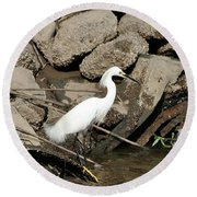 Snowy Egret Fishing Round Beach Towel
