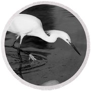 Snowy Egret Fishing Round Beach Towel