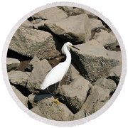 Snowy Egret On The Rocks Round Beach Towel