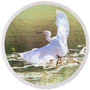 Snowy Egret Over Golden Pond Round Beach Towel