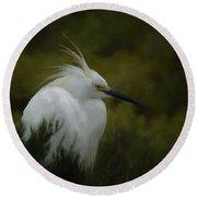 Snowy Egret Portrait Da Round Beach Towel