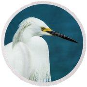 Snowy Egret Portrait Round Beach Towel