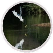 Snowy Egrets 080917-4290-1 Round Beach Towel