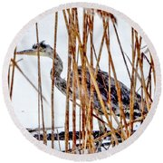 Snowy Heron? Round Beach Towel