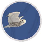 Snowy Owl In Flight Round Beach Towel