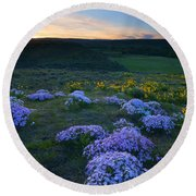 Snowy Phlox Sunset Round Beach Towel
